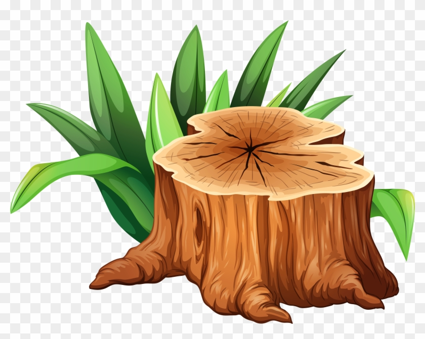 Tree Stump Clipart Png Image Tree Stump Clipart Transparent Png 4000x3009 5438 Pngfind A man emerges from a tree stump. tree stump clipart png image tree
