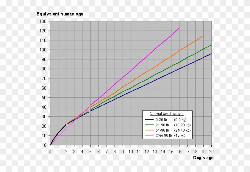 dog and human year graph dog years vs human years graph, hd png  dog year diagram #6