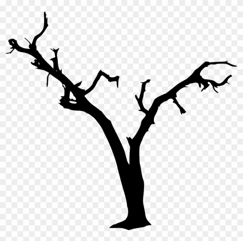 Free Png Dead Tree Silhouette Png Images Transparent Transparent Spooky Tree Silhouette Png Download 850x804 7238 Pngfind Tree silhouette autumn, tree, leaf, branch png. free png dead tree silhouette png