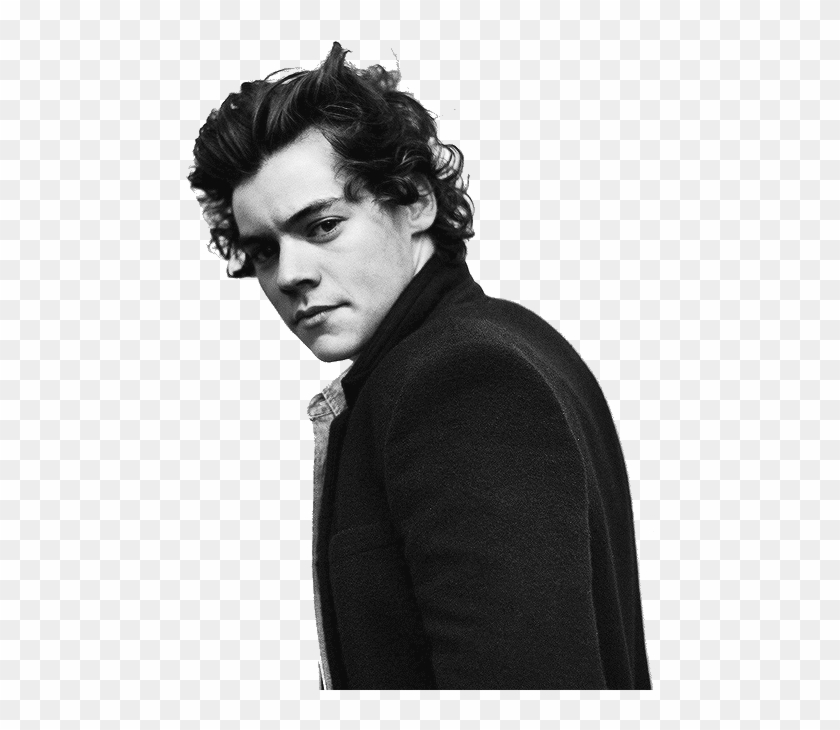 Harry Styles In Suit Png Transparent Png 500x700 10082 Pngfind