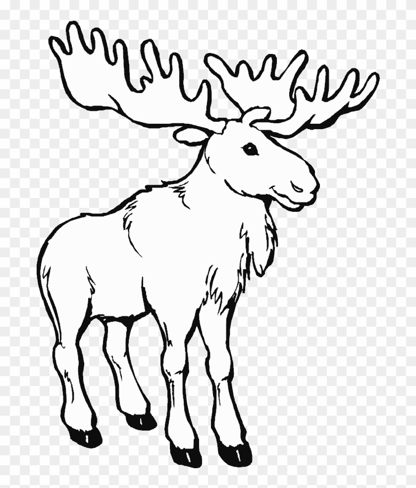 Png Library Animals Printable Coloring Pages Page Moose Coloring Pages Transparent Png 694x906 103131 Pngfind