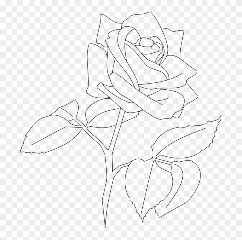 Flower Line Png Transparent Rose Line Art Png Download 699x750 1058834 Pngfind In this drawing lesson we will show you how to draw a rose. flower line png transparent rose line