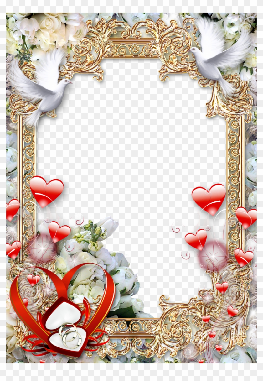 Free Png Download Wedding Photo Frame Png Images Background