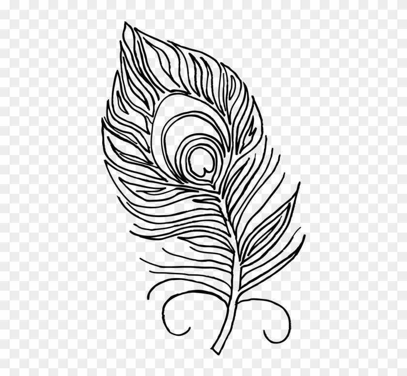 Plumas De Pavo Real Para Dibujar Hd Png Download 516x720