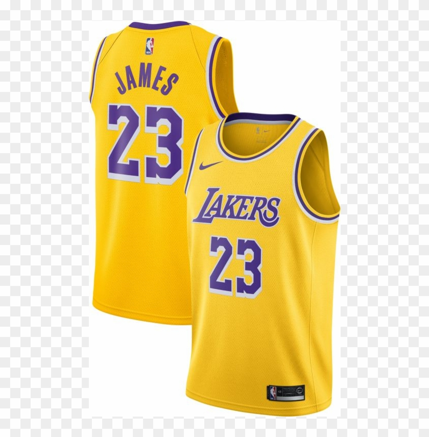 new product 495ea 01ecb Nike Lebron James Icon Edition Swingman Jersey Mens - Womens ...