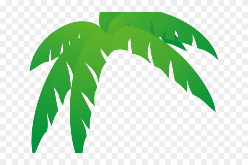 Green Leaves Clipart Jungle Leaf Palm Frond Palm Tree Leaf Hd Png