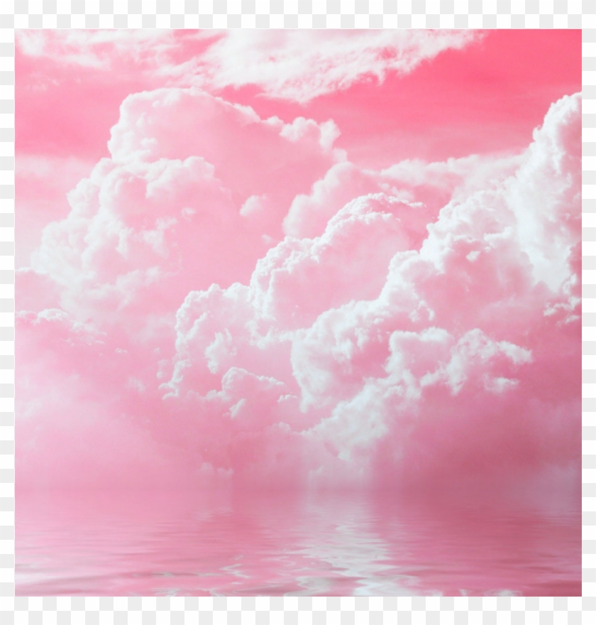 Pink Clouds Background Pink Aesthetic Background Hd Png Download 1024x1024 1272058 Pngfind