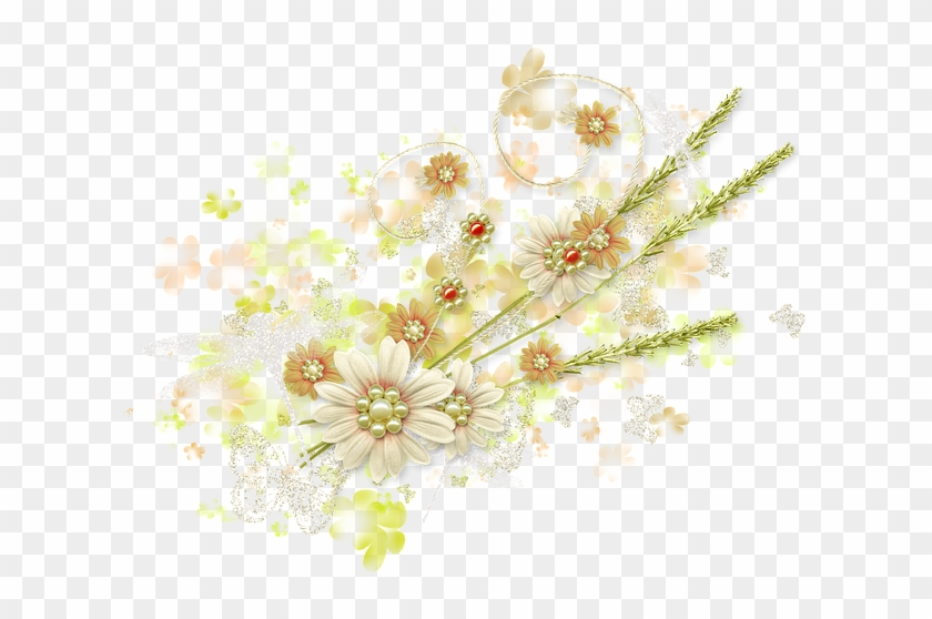 Spring, Summer, Flowers, Greens, Butterfly, Nature - Spring