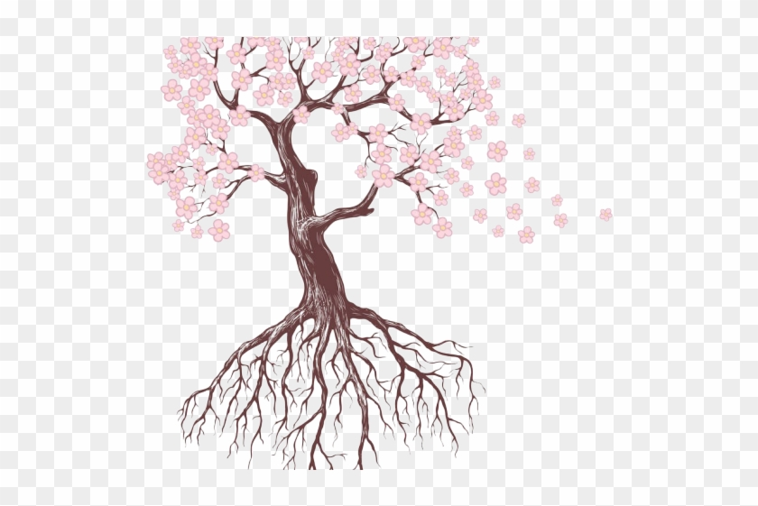Drawn Roots Sakura Tree Tree Drawing With Flowers Hd Png Download 640x480 135935 Pngfind