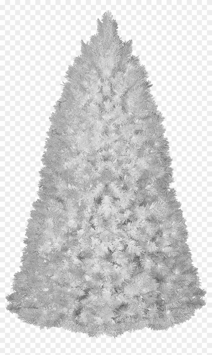 White Christmas Tree Png.White Christmas Tree Transparent Background Hd Png Download