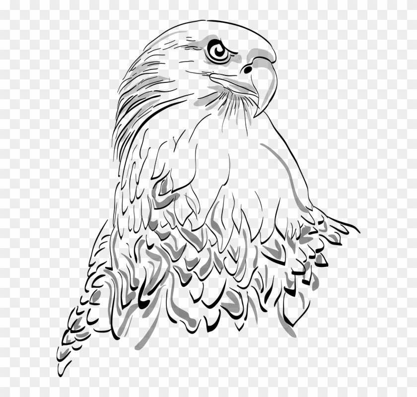 White Eagle Png