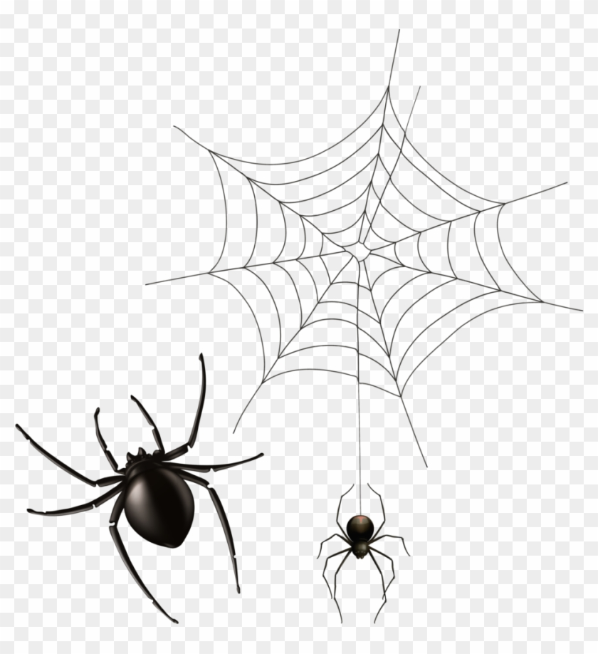 Halloween Cobwebs Clipart 7 Spider Web Bear