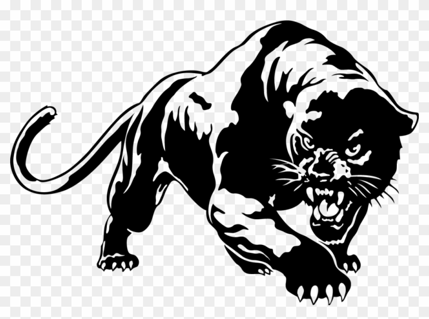 Panther Png Picture Black Panther Animal Drawing Transparent Png 800x557 144957 Pngfind