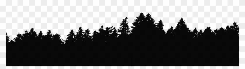 Evergreen Treeline With Transparent Background - Forest Tree