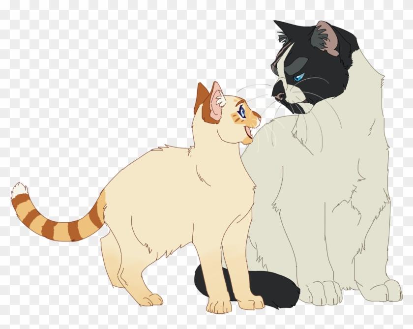 Warrior Cats Designs Oh No I Made A New Oc Warrior Cat Oc Art Hd Png Download 1280x986 1417790 Pngfind
