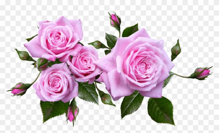 Rose Flower Arrangement Plant Flower Arrangement Roses Png Transparent Png 960x535 1470605 Pngfind
