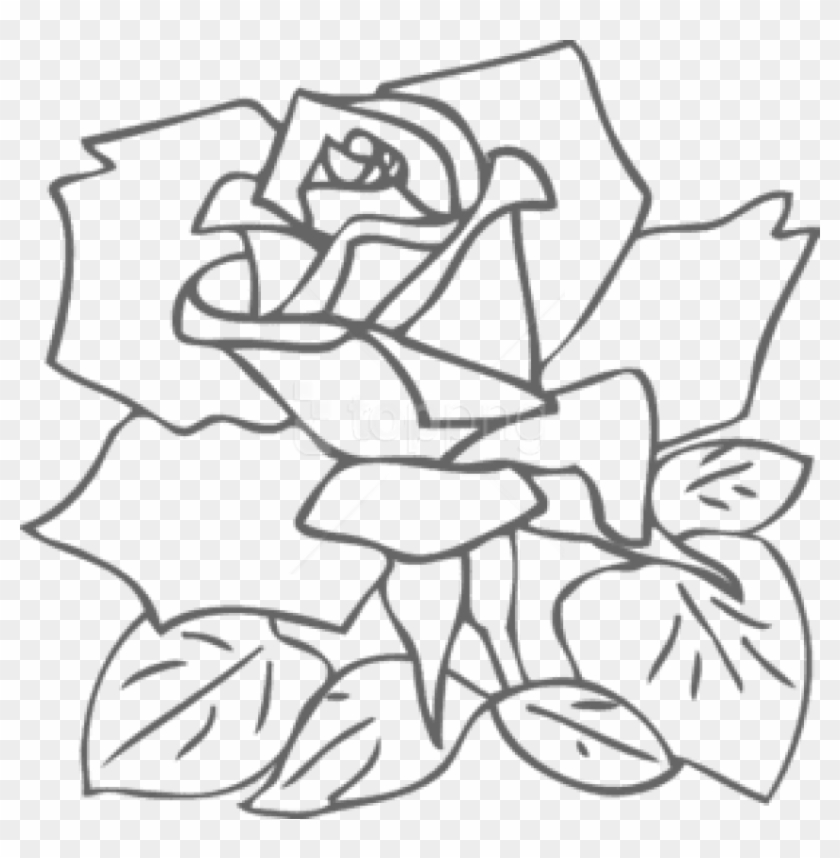 Texas outline rose. Free png download s