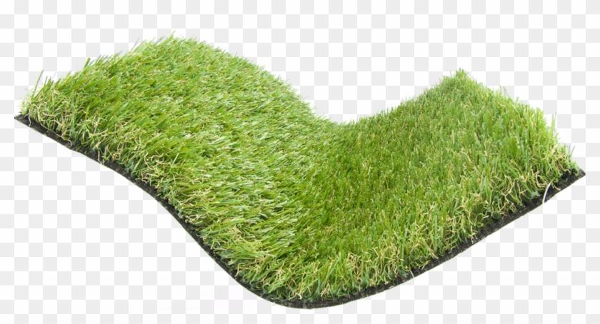 Summer Cool Artificial Grass, HD Png Download - 1024x505(#1768771