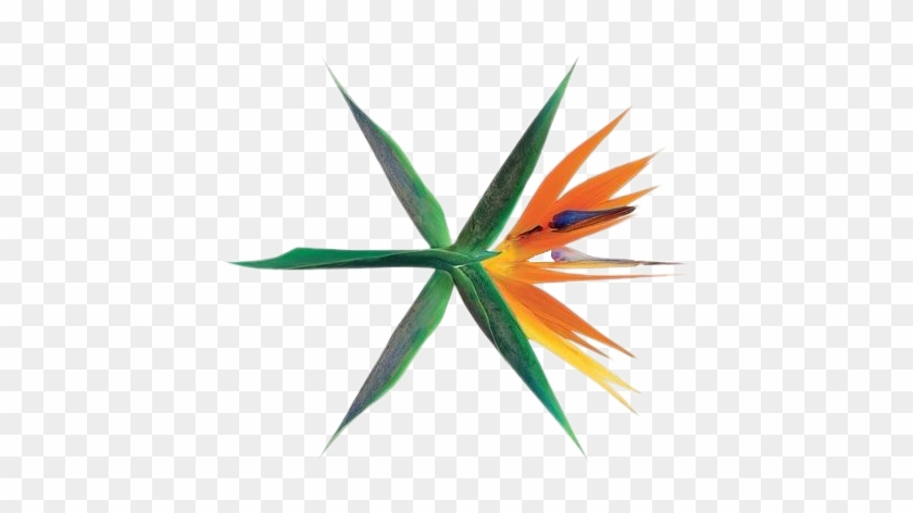 Exo Kokobop Logo Png Exo The War Album Transparent Png 587x598 180861 Pngfind The logo was used in the ep overdose. exo kokobop logo png exo the war
