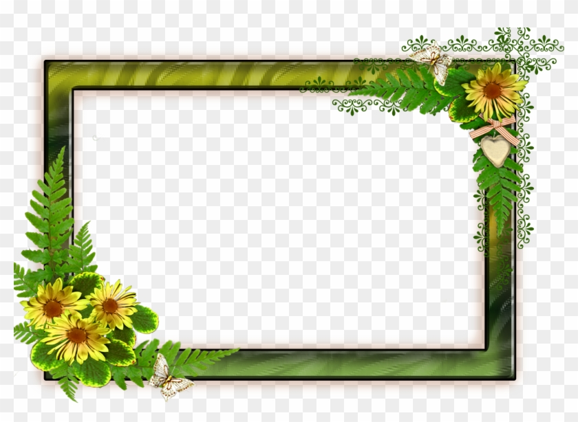 Flower Frame Png Png Format Frames Backgrounds Png