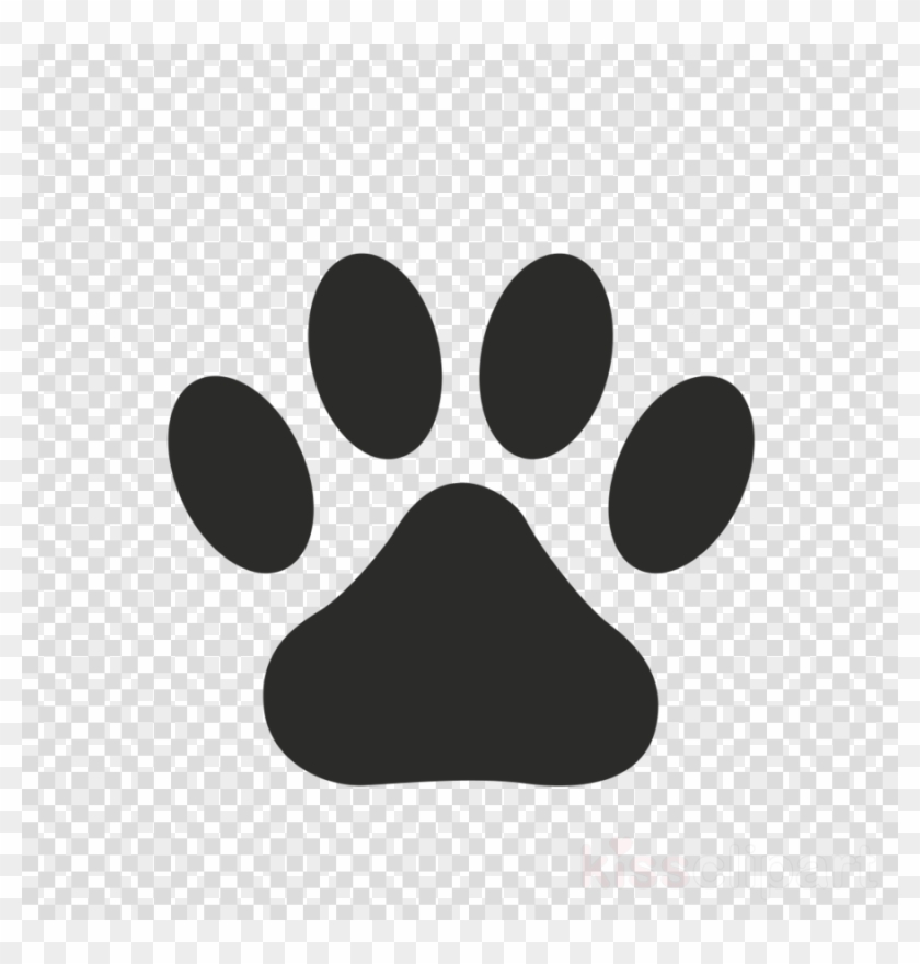 Transparent Paw Print Hd Png Download 900x900 1892018 Pngfind Find images of paw print. transparent paw print hd png download