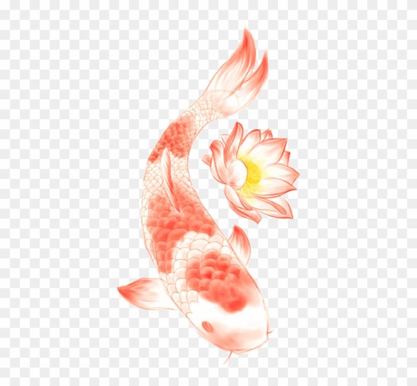 Butterfly Koi Nelumbo Nucifera Lotus Symbol Tattoo Lotus Tattoo