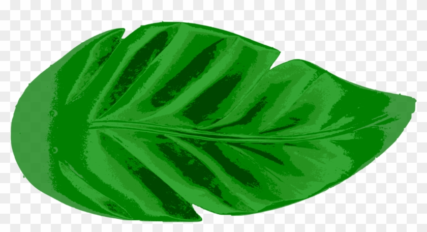 Leaf Tropics Earth Palm Branch Watercolor Painting Tropical Leaf Icon Png Transparent Png 1453x750 28609 Pngfind Leaves green, png, transparent, free download. leaf tropics earth palm branch