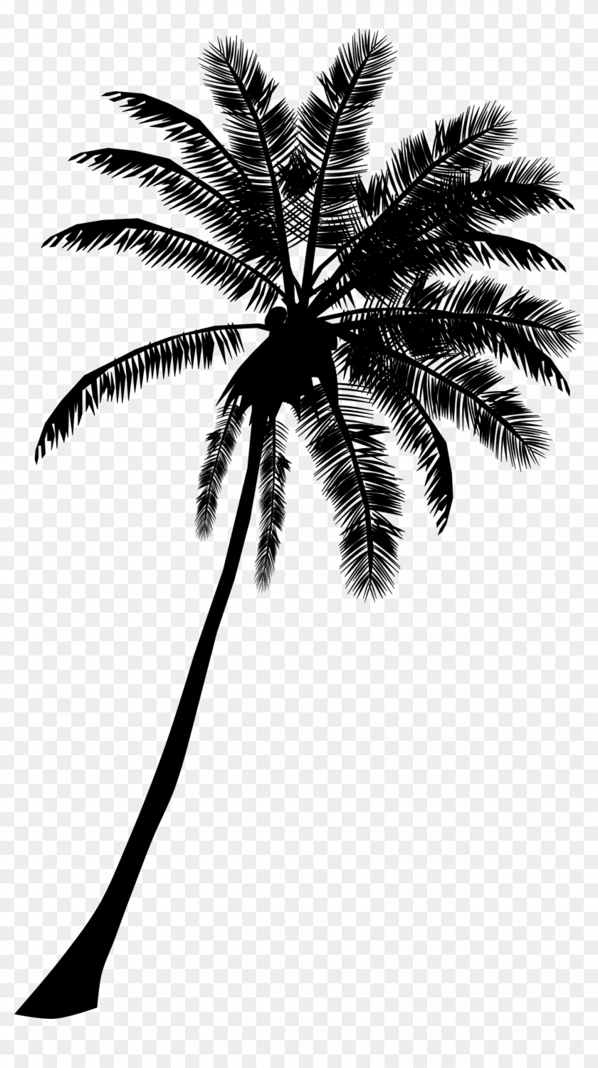 Palm Tree Banner Black And White Download Palm Tree Silhouette