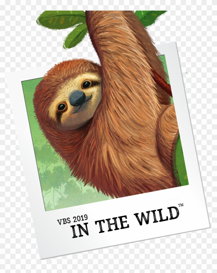 Vbs Preview Events - Vbs In The Wild, HD Png Download - 996x1200
