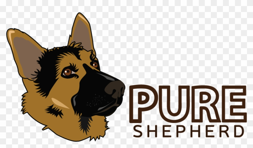 Top Dog Beds For German Shepherds Pure Shepherd Old German