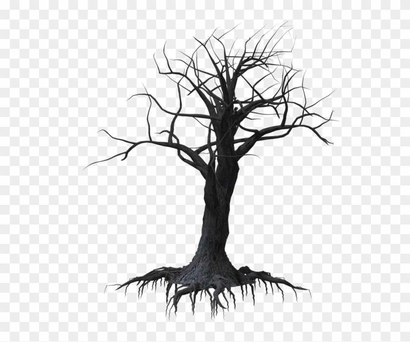 Dark Vector Creepy Forest - Spooky Tree Transparent