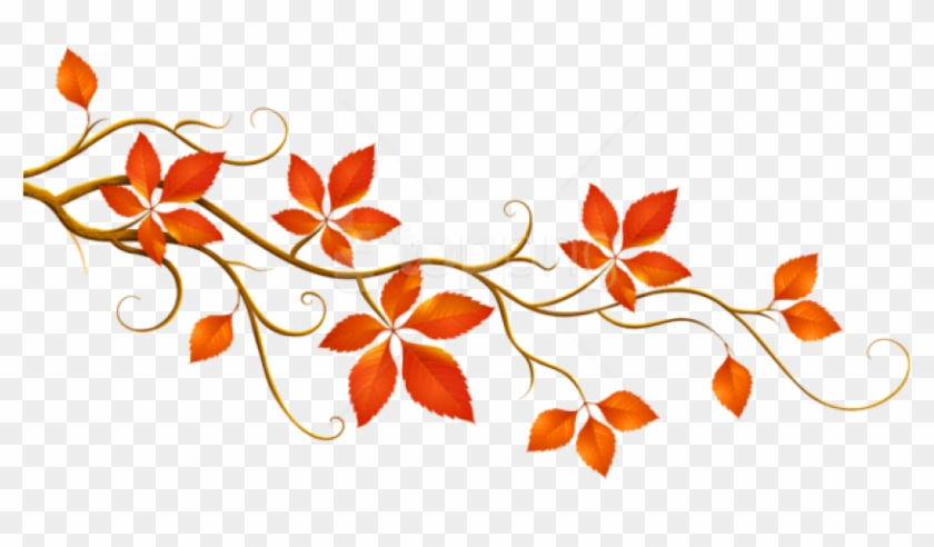 Free Png Download Decorative Branch With Autumn Leaves Fall Branches Clip Art Transparent Png 850x447 2203552 Pngfind