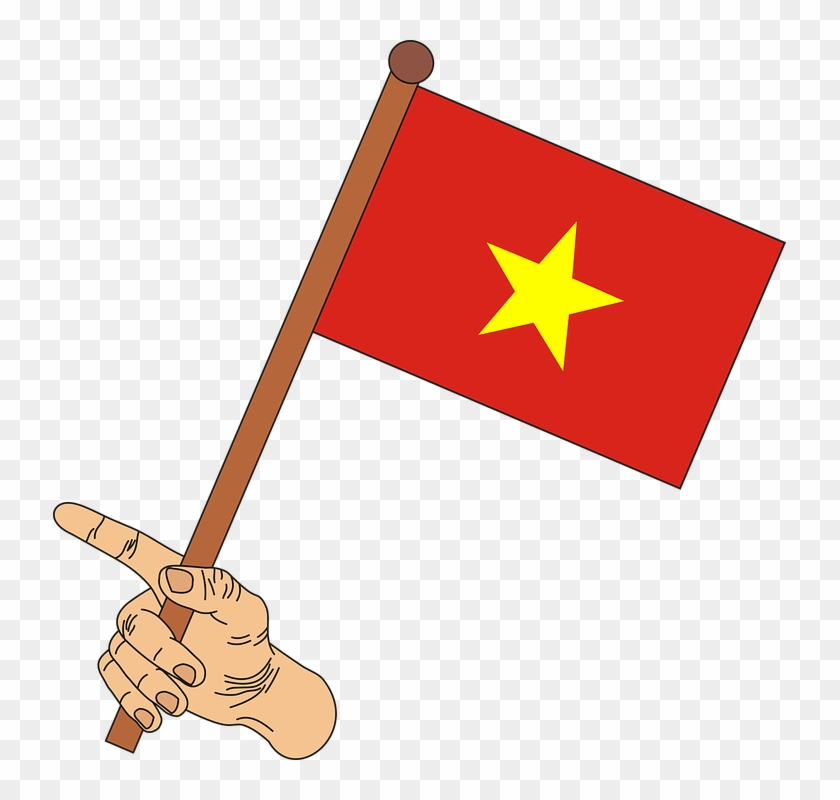 Vietnam Flag Png Vietnam Flag Png Clipart Transparent Png 733x720 2225314 Pngfind
