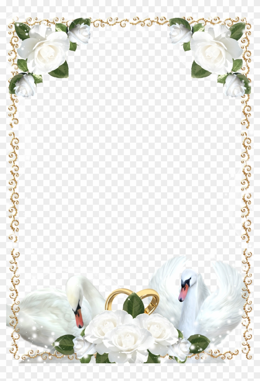 wedding roses and swans picture frame white wedding frame png transparent png 1885x2666 2293833 pngfind wedding roses and swans picture frame