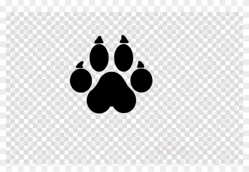 Cat Paw Prints Transparent Record Icon Transparent Background Hd Png Download 900x580 2354354 Pngfind Upload only your own content. cat paw prints transparent record