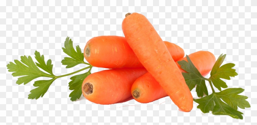 Carrots Png Purple Carrot Red Transparent Png 1594x1177