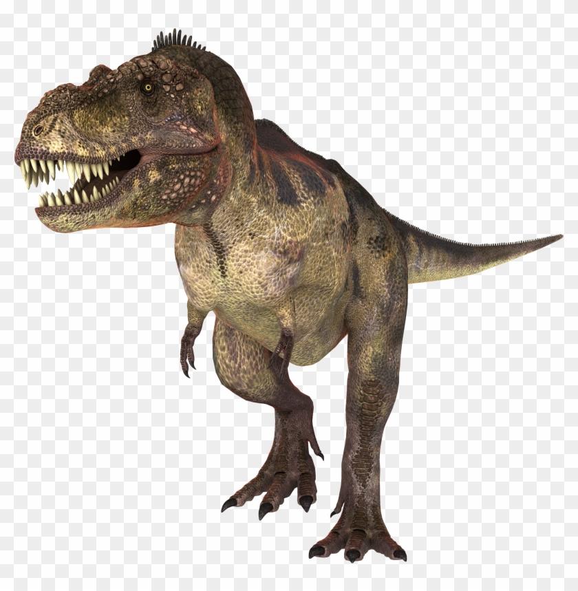 Dinosaur Png Imagenes En Hd De Dinosaurios Transparent Png 3500x2800 2469044 Pngfind Pelicula dinosaurio:prehistoria, hace 65 millones de años, al final del periodo cretáceo. hd de dinosaurios transparent png