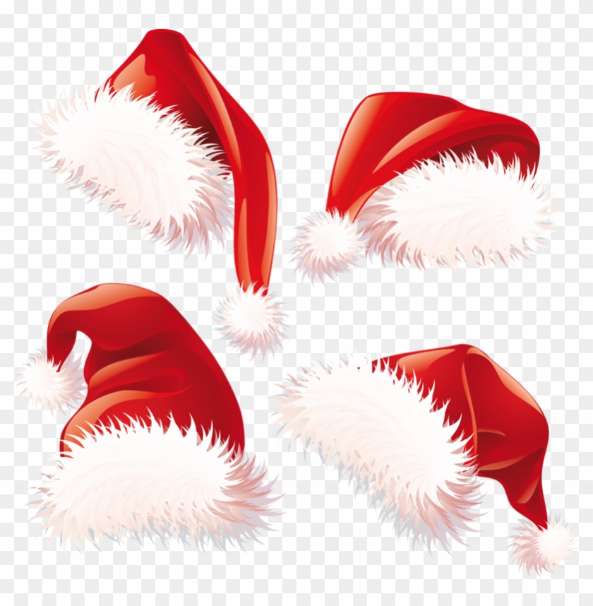 Christmas Hat Vector Png.Cat In The Hat Hat Png Vector Santa Hat Png Transparent