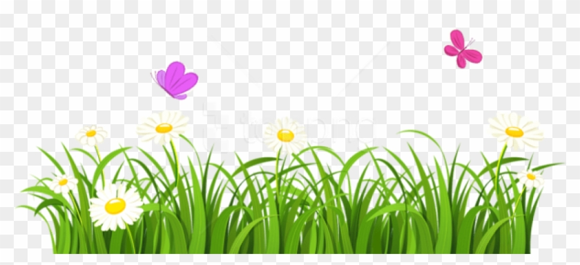 Free Png Download Grass And Butterflies Png Images Flowers Clipart Transparent Background Png Download 850x366 2507954 Pngfind