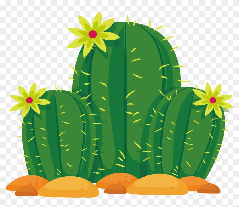 Cactus desert. Cactaceae sonoran euclidean vector