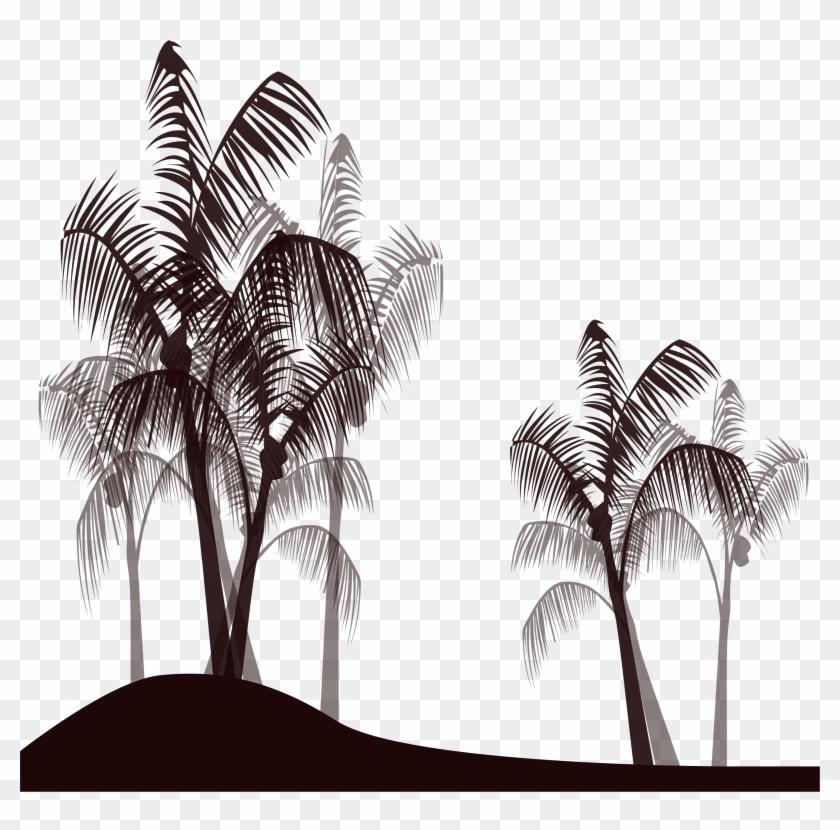Palm Tree Black Png Dibujos De Palmeras En Blanco Y Negro