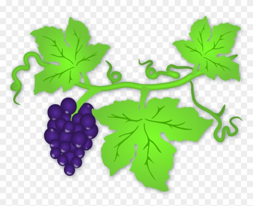 Grape Leaf Clip Art Grape Leaves Hd Png Download 800x614 266509 Pngfind