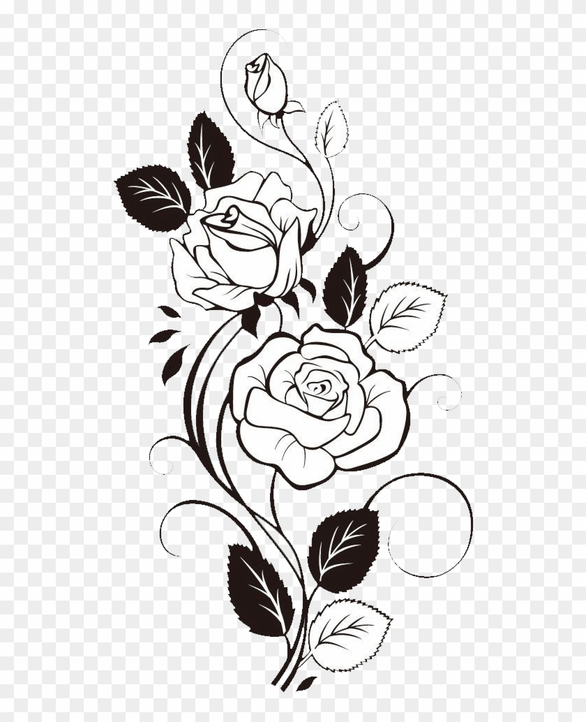 Flower Free Download Rose Flower Drawing Design Hd Png Download 566x990 2668198 Pngfind