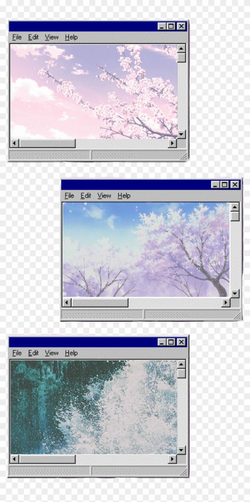 windows #windows98 #aesthetic #tumblr #computer - Windows 98