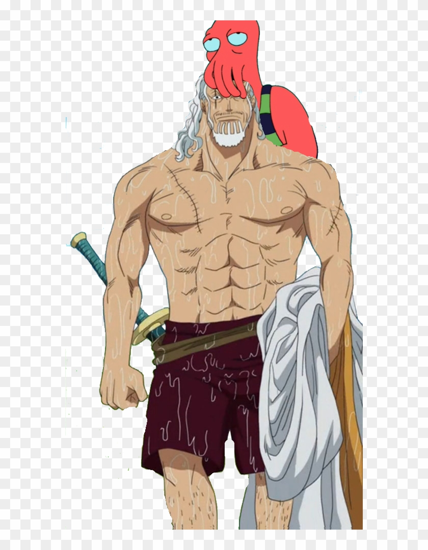 One Piece Rayleigh Hd Png Download 584x1000 2740136 Pngfind