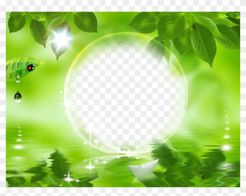 Download Hd Nature Frames Nature Green Leaf Background