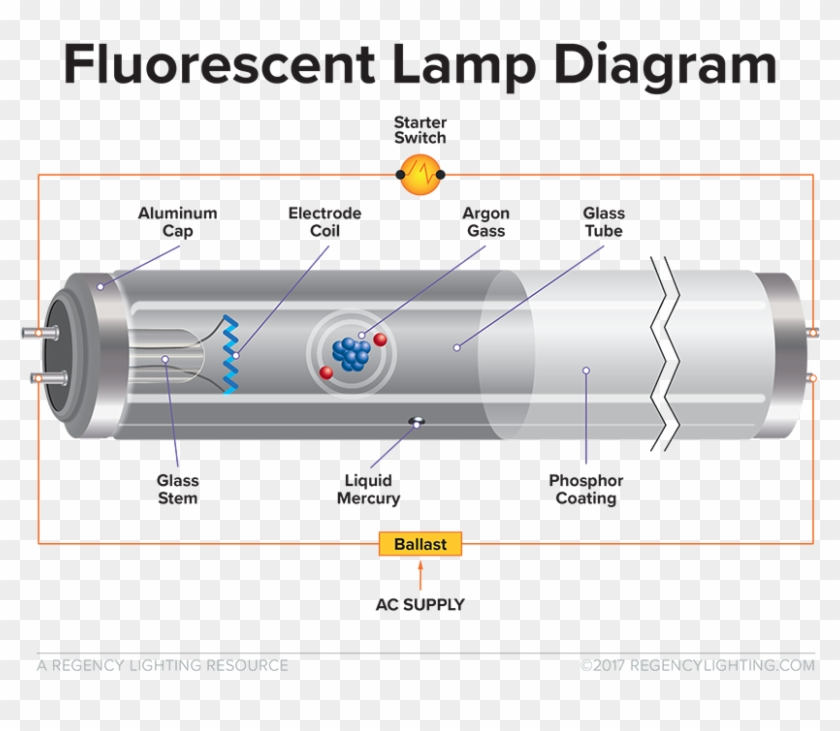 What Is Fluorescent Lighting A Diagram Of How A Fluorescent