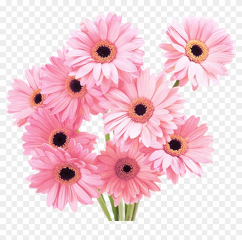Vaporwave flower. X aesthetic png
