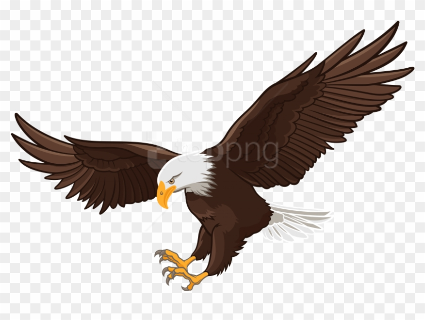 Eagles transparent background. Free png eagle images