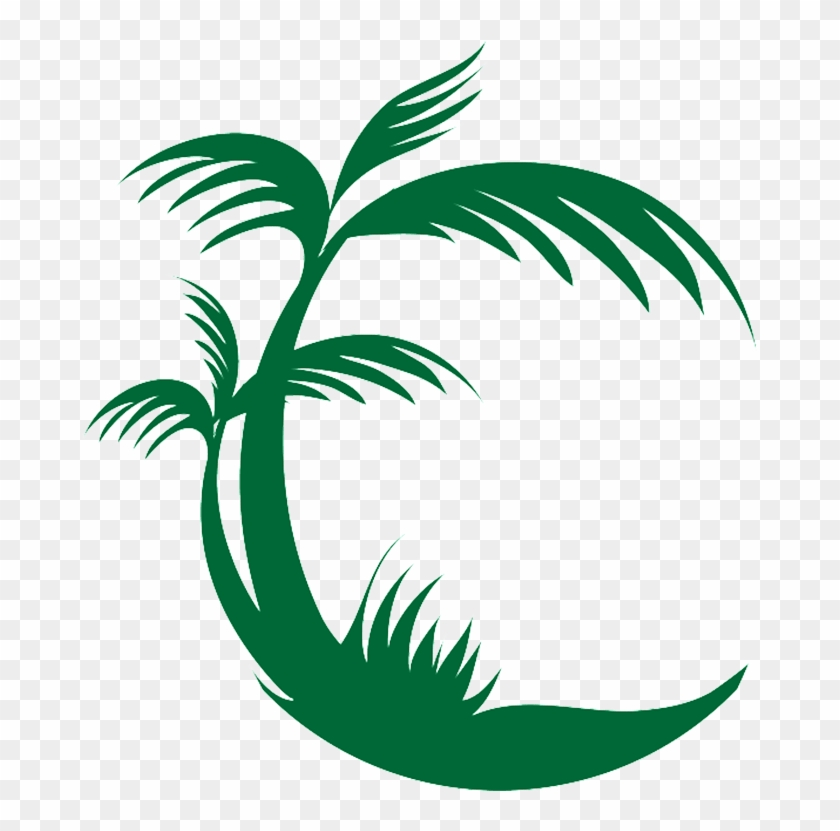 Palm Tree Png Logo Free Download Png Palm Tree Png Logo Transparent Png 674x751 30875 Pngfind ✓ free for commercial use ✓ high quality images. palm tree png logo free download png